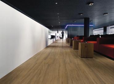 Royal Gallery - Madera